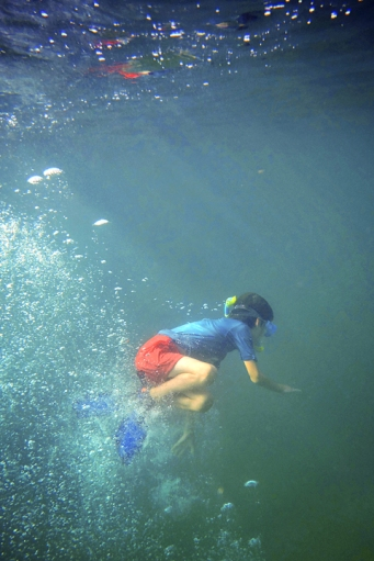 Will snorkelling