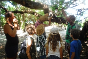 Bobby pointing our Weaver bird nests to the kids